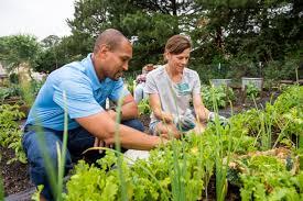 Help With Gardening